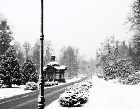A Winter Formby Dean Baltesson