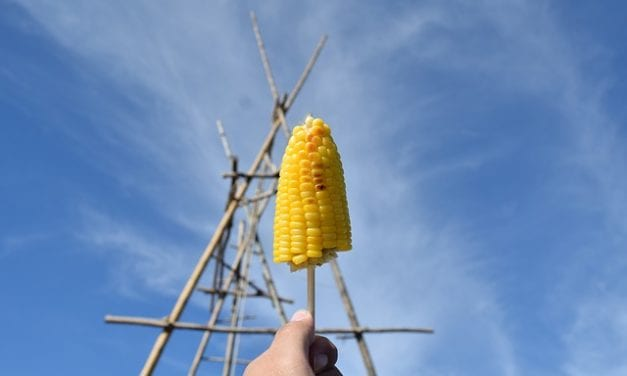 Sweet Corn from a Roadside Stallby Leah Angstman
