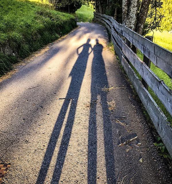 Fallow Shadows by Susan Gentry