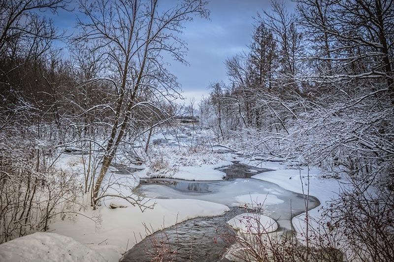 A Mind of Winter by Cordelia M. Hanemann